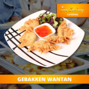catering-menu-briljant-gebakken-wantan2