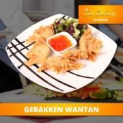 catering-menu-elite-gebakken-wantan2
