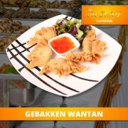 catering-menu-solide-gebakken-wantan2
