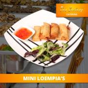 catering-menu-solide-mini-loempias2