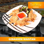 catering-menu-subliem-gebakken-wantan2